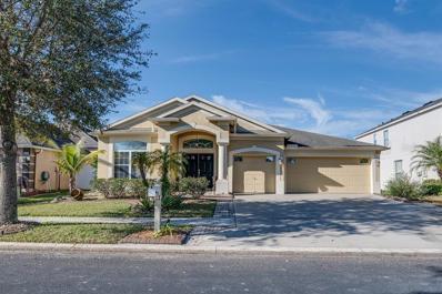 3531 Fortingale Drive, Wesley Chapel, FL 33543 - MLS#: T3155640