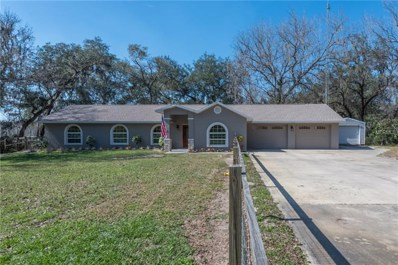 13335 Mahoney Road, San Antonio, FL 33576 - #: T3155825