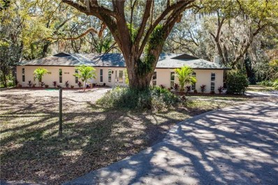 1613 Cottagewood Drive, Brandon, FL 33510 - MLS#: T3155998