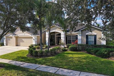 9120 Woodridge Run Drive, Tampa, FL 33647 - #: T3156171