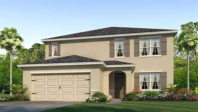 14140 Arbor Pines Drive, Riverview, FL 33579 - #: T3156447