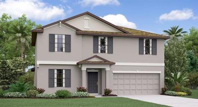 906 Zone Tailed Hawk Place, Ruskin, FL 33570 - #: T3156772