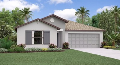 908 Zone Tailed Hawk Place, Ruskin, FL 33570 - #: T3156779