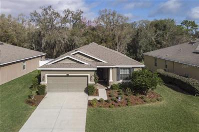 2815 Holly Bluff Court, Plant City, FL 33566 - #: T3156997