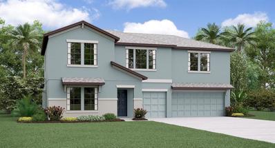 35965 Saddle Palm Way, Zephyrhills, FL 33541 - MLS#: T3157170
