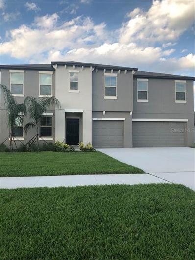 35973 Saddle Palm Way, Zephyrhills, FL 33541 - MLS#: T3157178