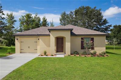 26398 Mc Allister Street, Brooksville, FL 34602 - MLS#: T3157362