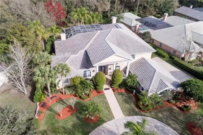 1907 Muirfield Way, Oldsmar, FL 34677 - #: T3157583