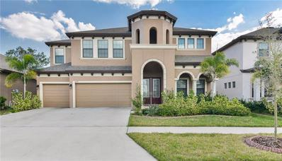 11407 Drifting Leaf Drive, Riverview, FL 33579 - #: T3157838