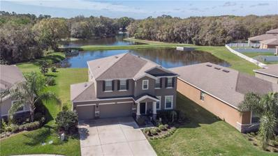 807 Bronze Bush Court, Plant City, FL 33566 - #: T3158053