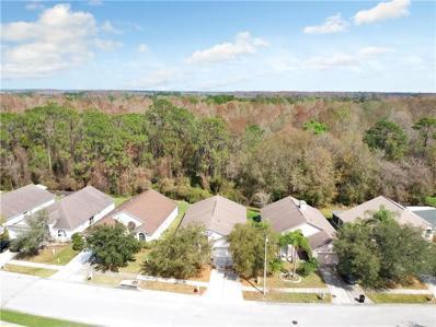 29611 Birds Eye Drive, Wesley Chapel, FL 33543 - MLS#: T3158350