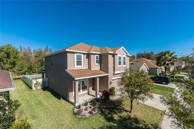 3951 Pacente Loop, Wesley Chapel, FL 33543 - MLS#: T3158408