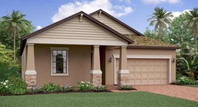 13228 Orca Sound Drive, Riverview, FL 33579 - #: T3158470