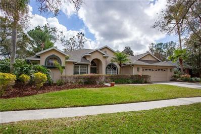 3802 Spruce Pine Drive, Valrico, FL 33596 - MLS#: T3158594