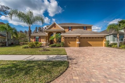 19120 Sweet Clover Lane, Tampa, FL 33647 - MLS#: T3159528
