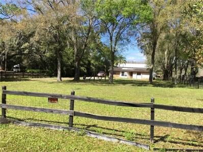 5101 Lake Le Clare Road, Lutz, FL 33558 - MLS#: T3159986
