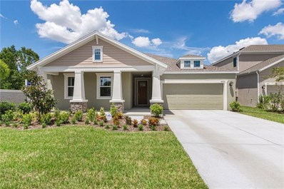 4919 Lakeshore Oaks Court, Tampa, FL 33624 - MLS#: T3160090