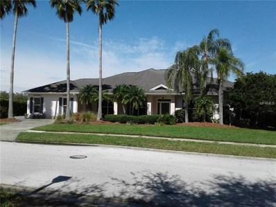 1930 Lago Vista Boulevard, Palm Harbor, FL 34685 - #: T3160116