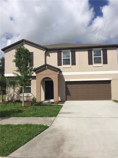 12643 Lemon Pepper Drive, Riverview, FL 33578 - #: T3160674