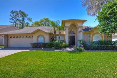 5809 Piney Lane Drive, Tampa, FL 33625 - #: T3160767