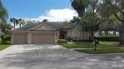 22833 Collridge Drive, Land O Lakes, FL 34639 - MLS#: T3160994