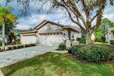 19111 Lake Audubon Drive, Tampa, FL 33647 - #: T3161326