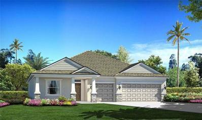 11964 Cinnamon Fern Drive, Riverview, FL 33579 - #: T3161346