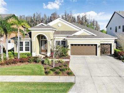32861 Natural Bridge Road, Wesley Chapel, FL 33543 - #: T3161356