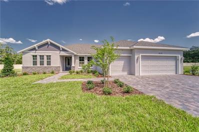 14107 Tomentosa Avenue, Riverview, FL 33569 - #: T3161902
