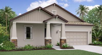 11873 Sunburst Marble Road, Riverview, FL 33579 - #: T3162159