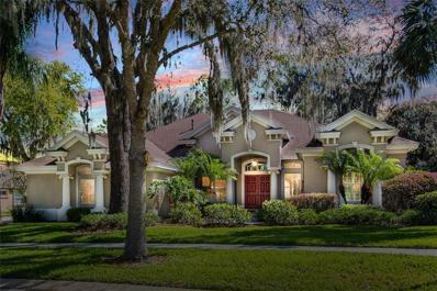 16213 Ternglade Drive, Lithia, FL 33547 - MLS#: T3162398