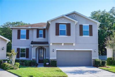 1105 Canyon Oaks Drive, Brandon, FL 33510 - #: T3162830