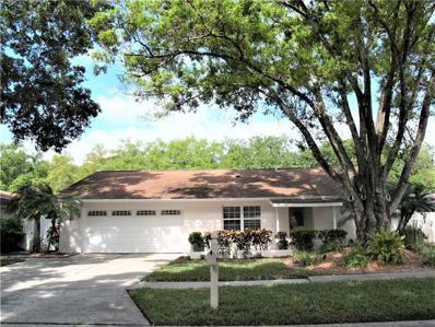 4209 Hollowtrail Drive, Tampa, FL 33624 - MLS#: T3163305