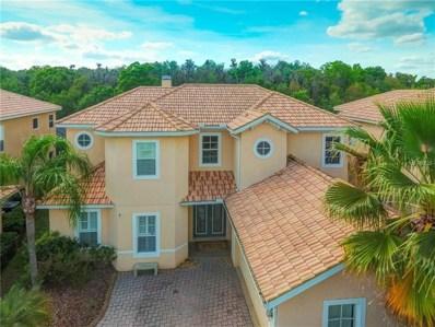 18046 Cozumel Isle Drive, Tampa, FL 33647 - MLS#: T3163457