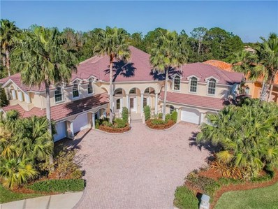 17951 Cachet Isle Drive, Tampa, FL 33647 - MLS#: T3163795