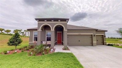 11933 Tetrafin Drive, Riverview, FL 33579 - MLS#: T3163835