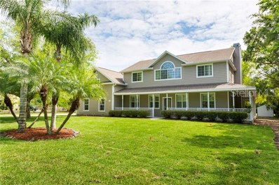 12404 Pony Court, Tampa, FL 33626 - #: T3164079