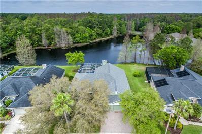 12001 Middlebury Drive, Tampa, FL 33626 - #: T3164108