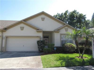 1328 Big Pine Drive, Valrico, FL 33596 - #: T3164356