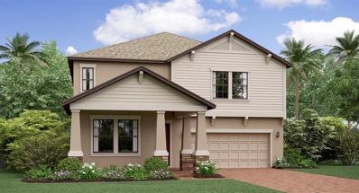 13318 Wildflower Meadow Drive, Riverview, FL 33579 - #: T3164762