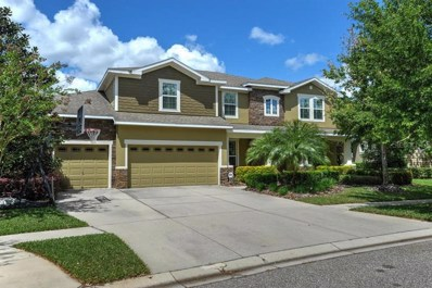 15940 Ternglade Drive, Lithia, FL 33547 - #: T3164779