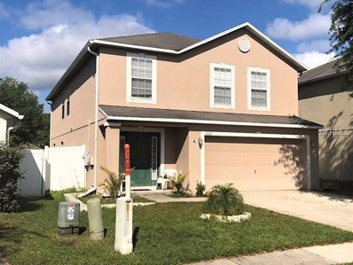 3447 Fyfield Court, Land O Lakes, FL 34638 - #: T3164780