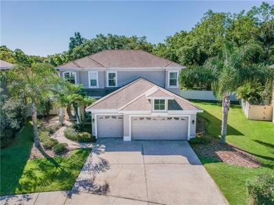 528 Harbor Grove Circle, Safety Harbor, FL 34695 - MLS#: T3165511
