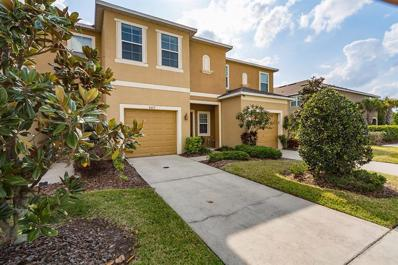 8417 Painted Turtle Way, Riverview, FL 33578 - MLS#: T3165926