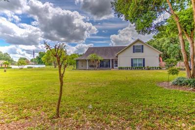 3109 E Williams Road, Plant City, FL 33565 - #: T3166116