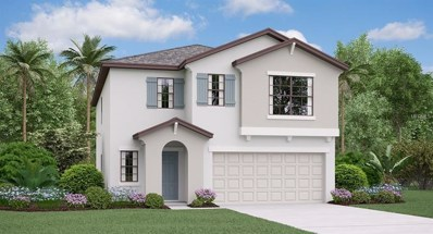 12730 Lemon Pepper Drive, Riverview, FL 33578 - #: T3166485