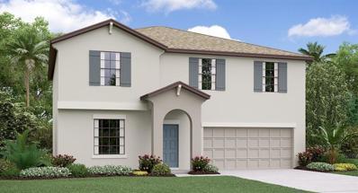 10021 Rose Petal Place, Riverview, FL 33578 - #: T3166499