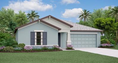 10005 Caraway Spice Avenue, Riverview, FL 33578 - #: T3166502