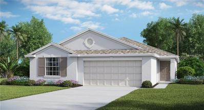 1714 Broad Winged Hawk Drive, Ruskin, FL 33570 - #: T3167007