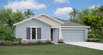 909 Zone Tailed Hawk Place, Ruskin, FL 33570 - #: T3167014